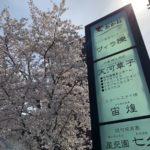 桜の季節となりました。